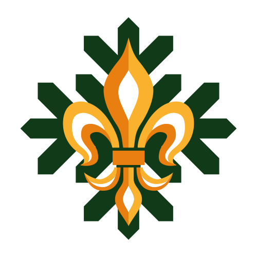 Code 4 Scout Romania icon
